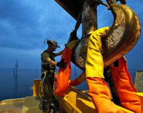 Offshore-Lastaufnahmemittel